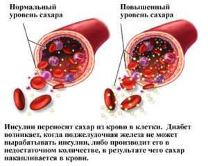 Воздействие на организм