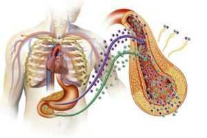 Лечение периферического несахарного диабета