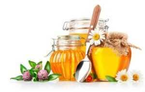 Учёные сосредоточились на том, какие виды мёда наиболее эффективные