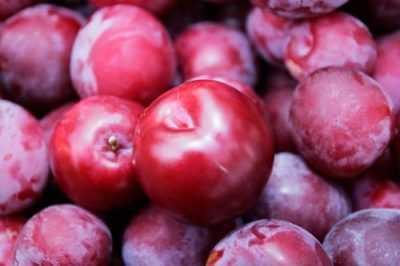Сливы при сахарном диабете - разрешен ли данный фрукт