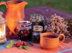 Сахарный диабет и травы