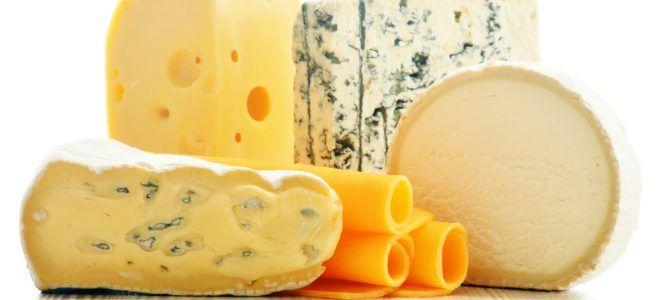 Употребление сыров при панкреатите