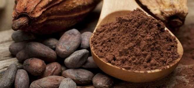 Можно ли при панкреатите употреблять какао?