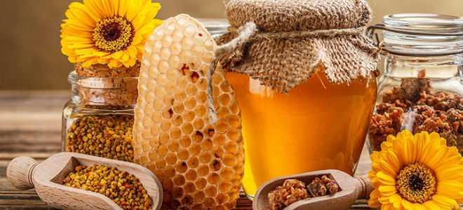 Методы лечения панкреатита прополисом, пергой и другими продуктами пчеловодства