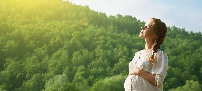 Можно ли принимать Иберогаст во время беременности и при кормлении грудью?