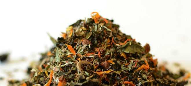 Травяные сборы при панкреатите: аптечные травы для лечения поджелудочной железы