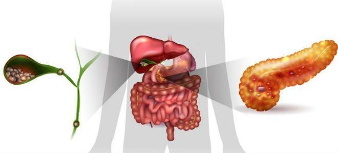 Причины и развитие уплотнений в поджелудочной железе