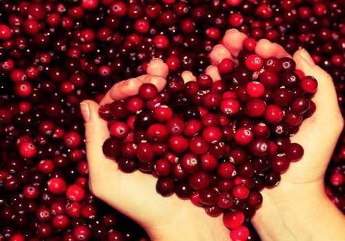 сердце из ягод клюквы