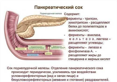 Панкреатический сок