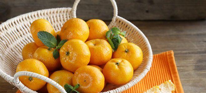 Можно ли употреблять при панкреатите мандарины?