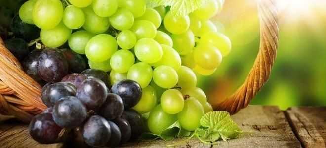 Можно ли при панкреатите есть виноград?