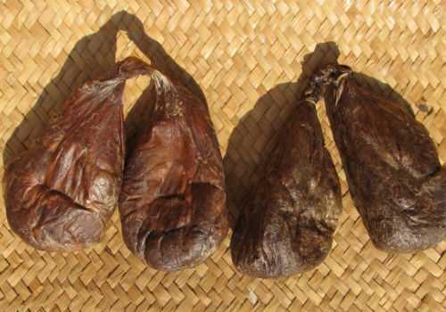 бобровая струя