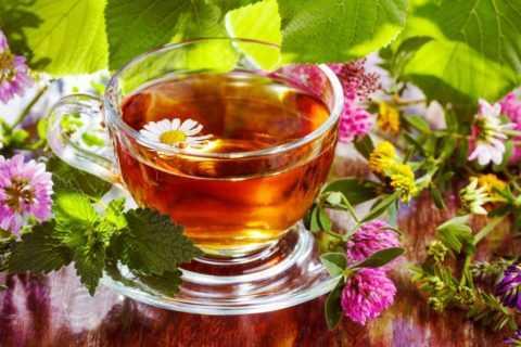 Ароматный чай на травах – одно из лучших средств для борьбы с имеющимися недугами.