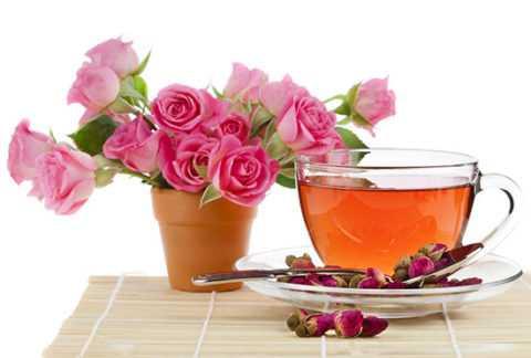 Чайная роза – богатейший источник витамина Е