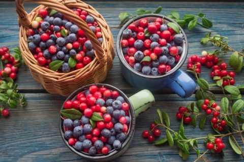 Диабетикам полезнее небольшое количество ягод черники, чем клюквы