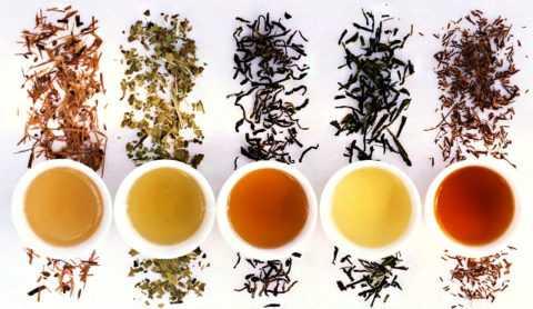 Диабетики, хоть и вынуждено, но могут стать настоящими знатоками и ценителями чая