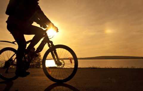 Езда на велосипеде (можно заменить велотренажером)