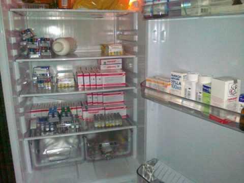 Инсулины должны храниться в холодильнике, при высоких температурах препарат теряет свои свойства.