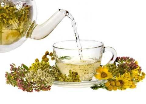 Избавиться от недугов и укрепить здоровье помогут напитки на основе лекарственных трав.