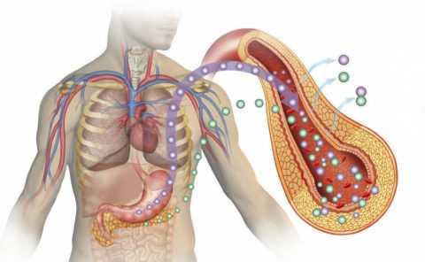 Излечение организма от диабета
