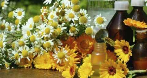 Лечебные травы для ванночек и эфирные масла