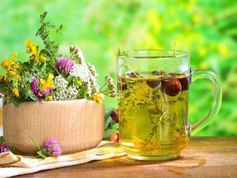 Лекарственные травы при диабете – это достаточно действенный способ лечения.