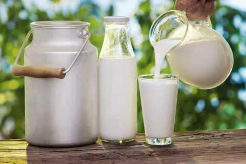 Молоко – это основной источник лактозы.