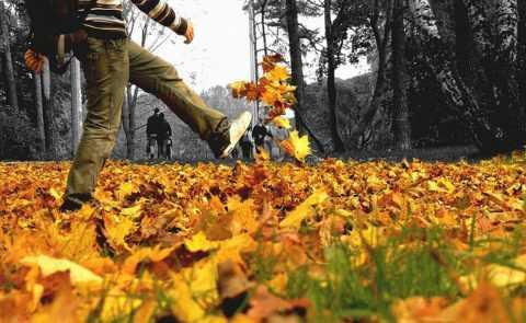 На пользу пойдут прогулки на свежем воздухе.