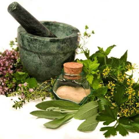 Необходим комплексный подход к лечению недуга в домашних условиях травами