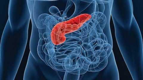 Несмотря на небольшой вес поджелудочной железы (около 70 гр), она выполняет жизненно-важные задачи в организме.