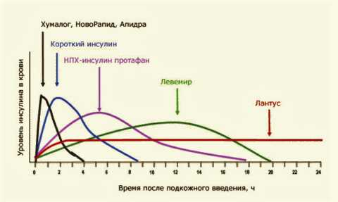Общая продолжительность и пик максимального действия разных типов инсулиновых лекарств