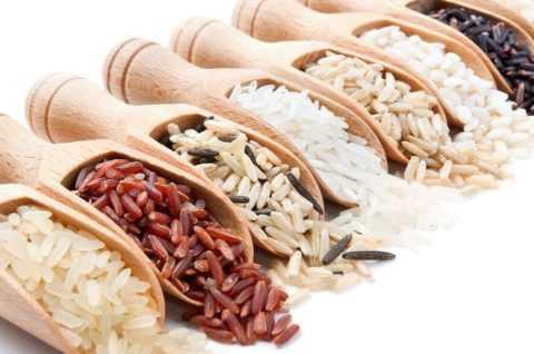 Одна из древнейших зерновых культур