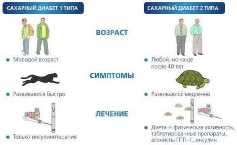 Отличия не только в механизме развития