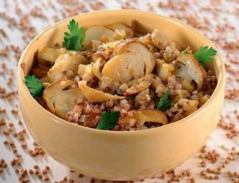 Перед употреблением грибов следует убедиться в полной переносимости этого продукта.
