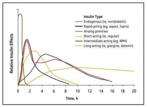 Скорость наступления и длительность поддержания терапевтического эффекта инсулинов.