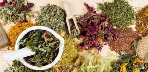 Сочетание лекарственных растений позволяет предотвратить развитие осложнений СД.
