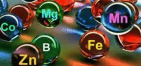 Состав минералки обогащен огромным количеством важных и полезных микроэлементов.