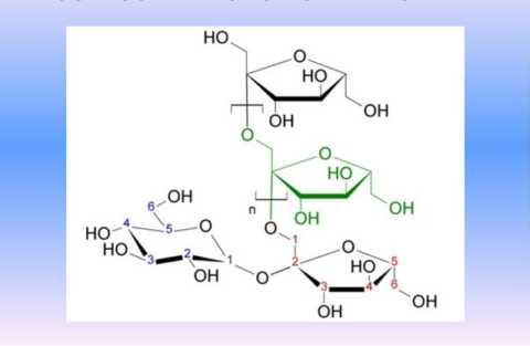 Строение молекулы инулина