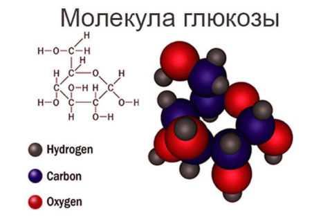 Структурная формула углевода