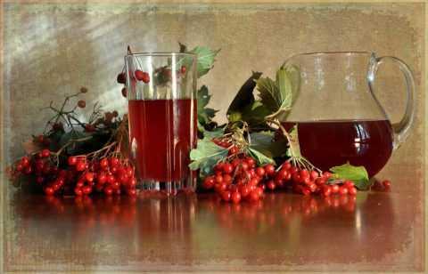 Свежий ягодный сок отлично утоляет жажду и укрепляет иммунные силы организма.