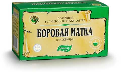 Траву боровая матка называют также рамишия или ортилия