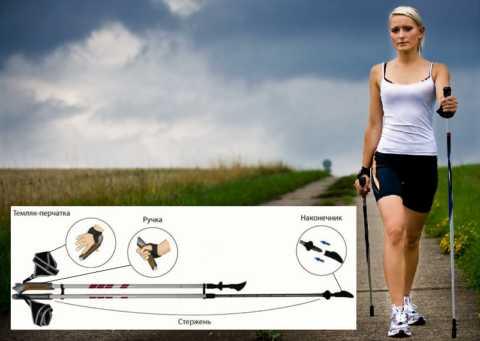 Устройство телескопической скандинавской палки для Nordic Walking