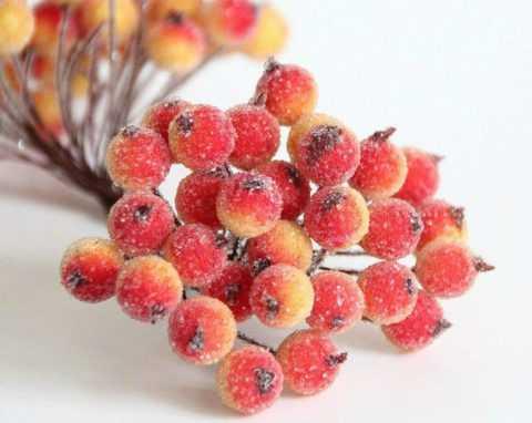 В ягодах калины сосредоточено большое количество витаминов и важных микроэлементов.