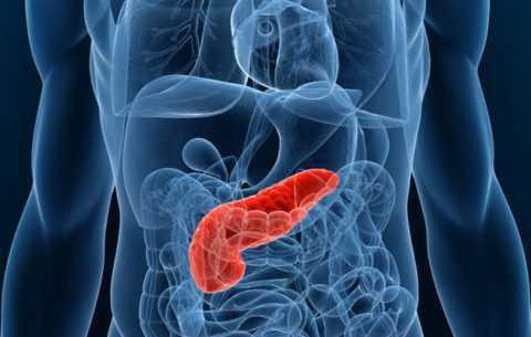 Заболевания поджелудочной железы.
