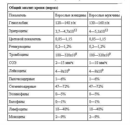 Нормальные показатели общего исследования крови