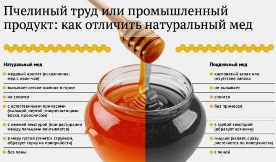 Как выбрать натуральный мед