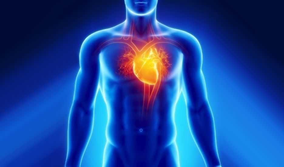 Ангиопатия сердечных сосудов