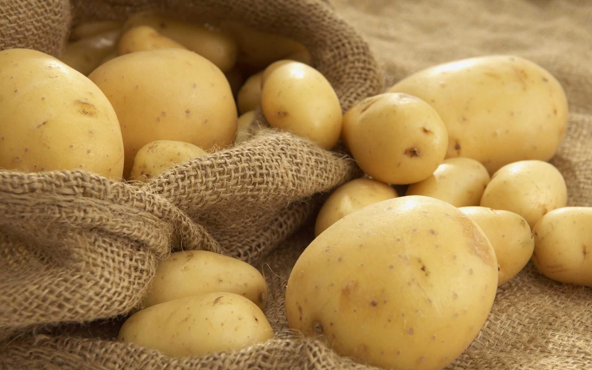 Условная польза картофеля
