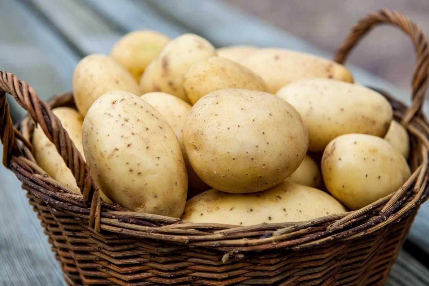 В каком виде можно употреблять картофель?
