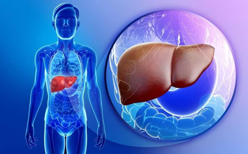 Влияние диабета на печень
